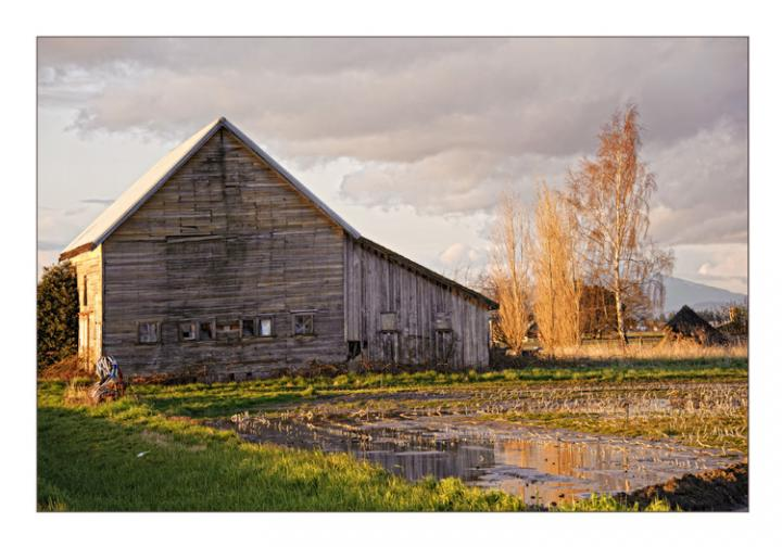 Barn at Sunset, Whidbey Island, WA